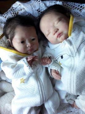 jumeaux (19)